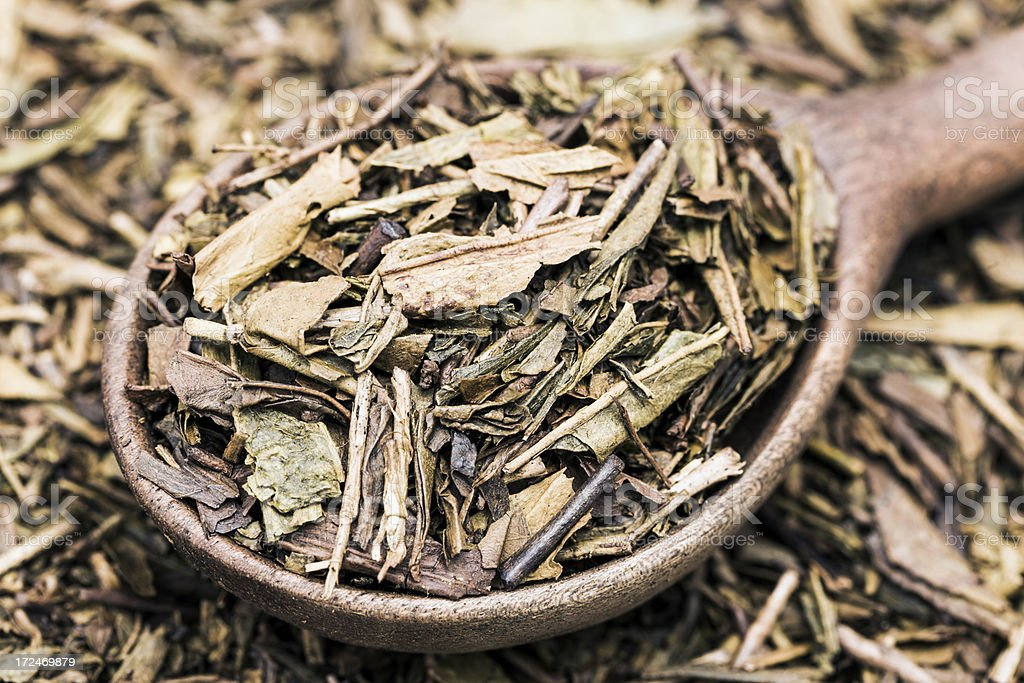 Hojicha tea royalty-free stock photo