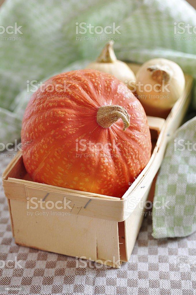 Hokkaido and Butternut Pumpkin royalty-free stock photo