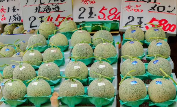 Hokkaido melon at Hakodate Morning Market stock photo