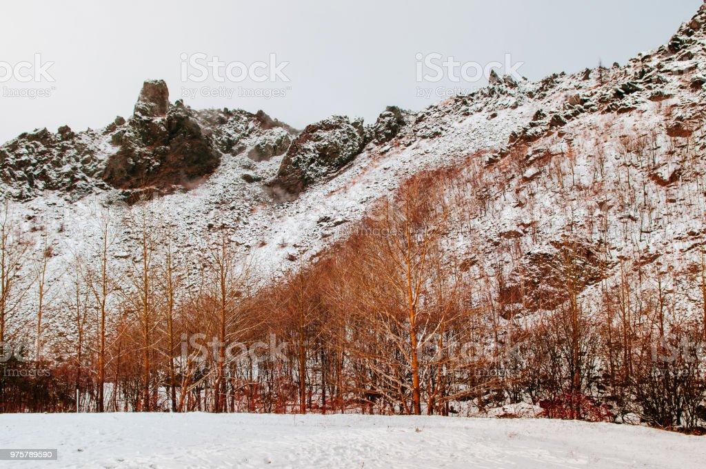 Hokkaido-Usuzan Berg im Winterschnee mit Herbst Laub und Pine tree - Lizenzfrei Asien Stock-Foto