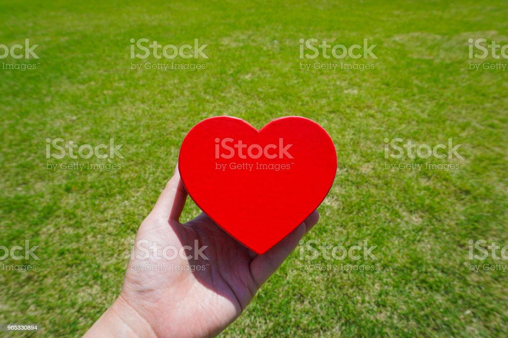 Hold a heart. Image of Thank you or love. royalty-free stock photo