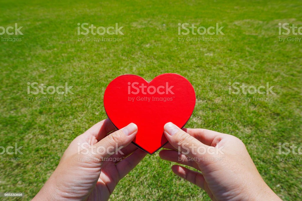 Tenez un cœur. Image de Merci ou l'amour. - Photo de Amour libre de droits