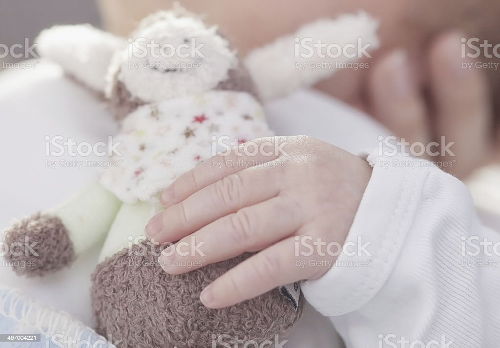 Hold cuddly toy stock photo