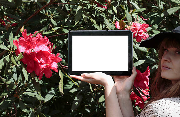 blank tablet computer garden flowers latvian girl outdoors - whiteway latvian outdoor girl stock photos and pictures