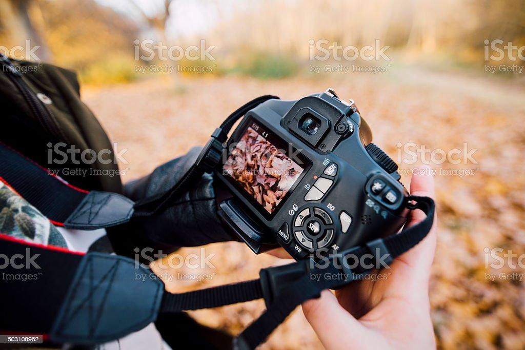 Holding a DSLR stock photo