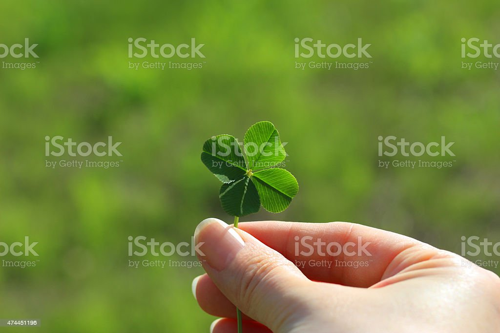 Holding a four leaf clover stock photo