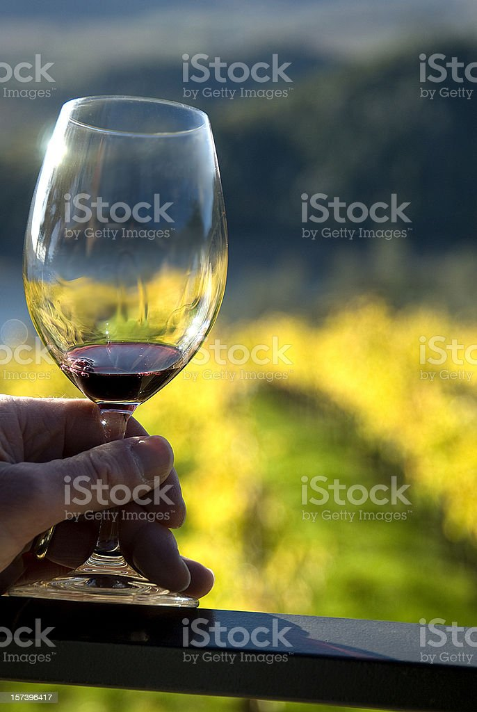 Holding a glass of wine with grape fields in background royalty-free stock photo