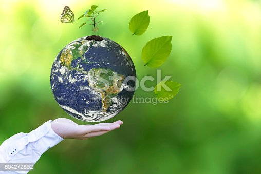 istock Holding a glowing earth globe in his hands with butterfly.   World Environment and Save Environment. Earth image provided by Nasa. 804272892