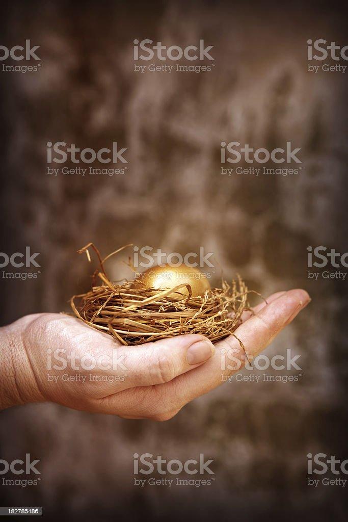 Holding a Golden Egg stock photo