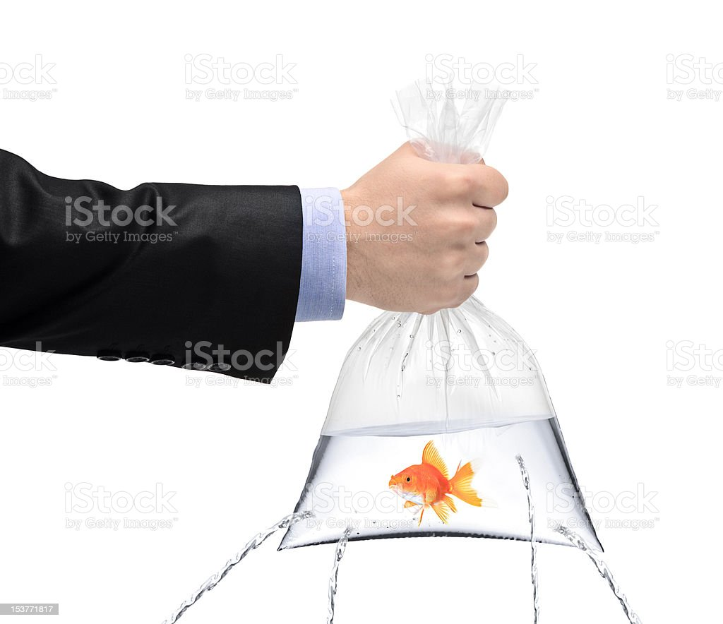 Holding a golden fish in bag with holes royalty-free stock photo
