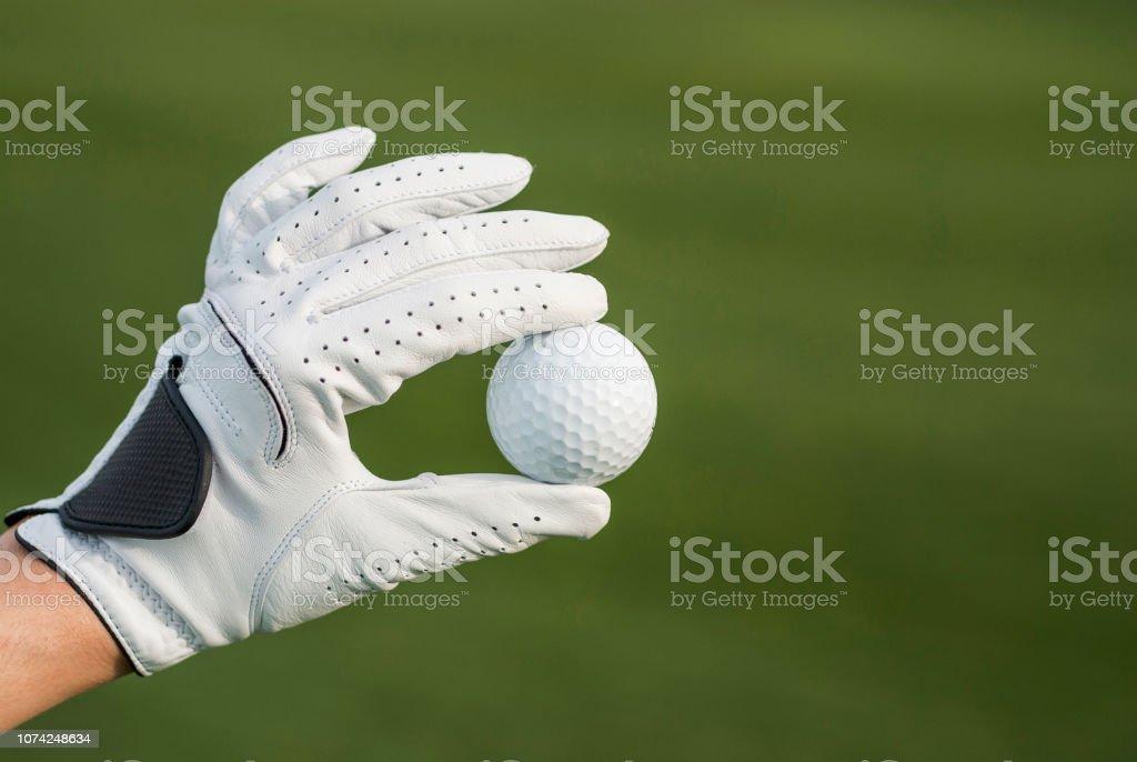 Hand in glove holding golf ball.