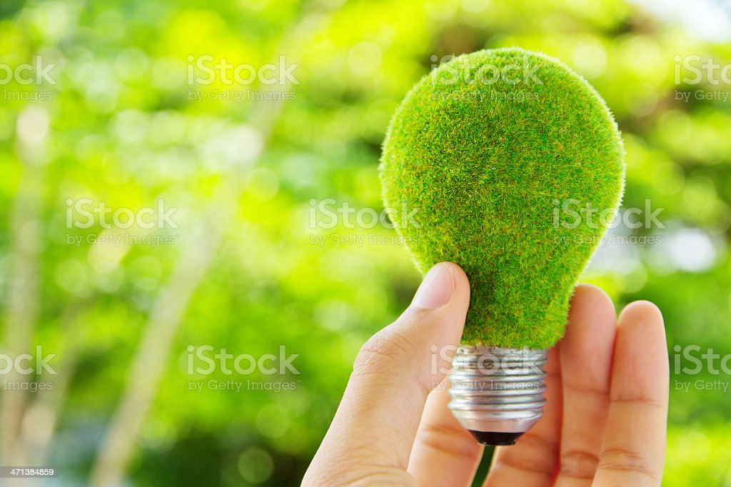 Holding a lightbulb covered in moss stock photo