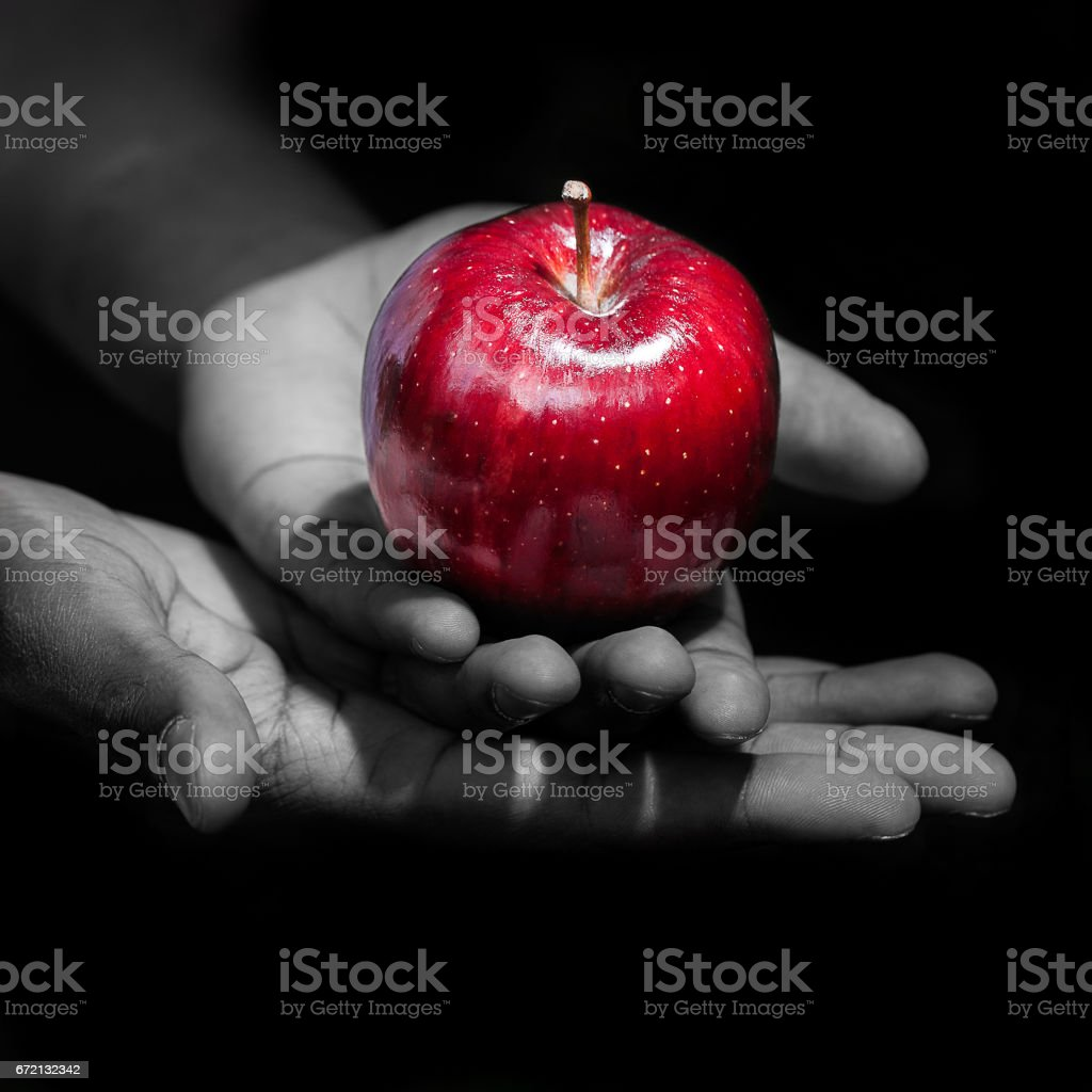 Holding a red apple, the forbiden fruit stock photo