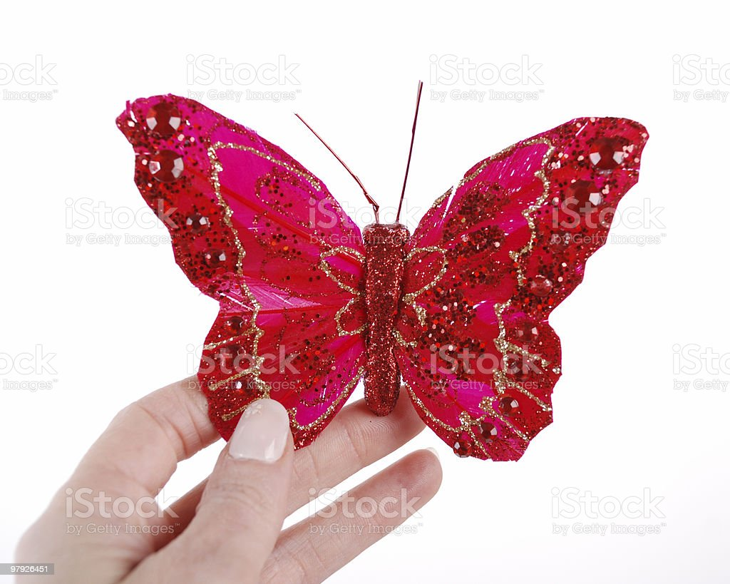 Holding a red butterfly royalty-free stock photo