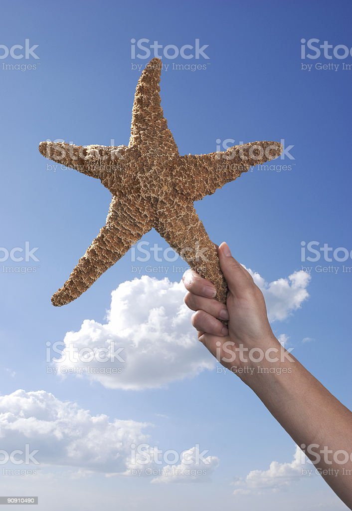Holding a Starfish at the Beach royalty-free stock photo