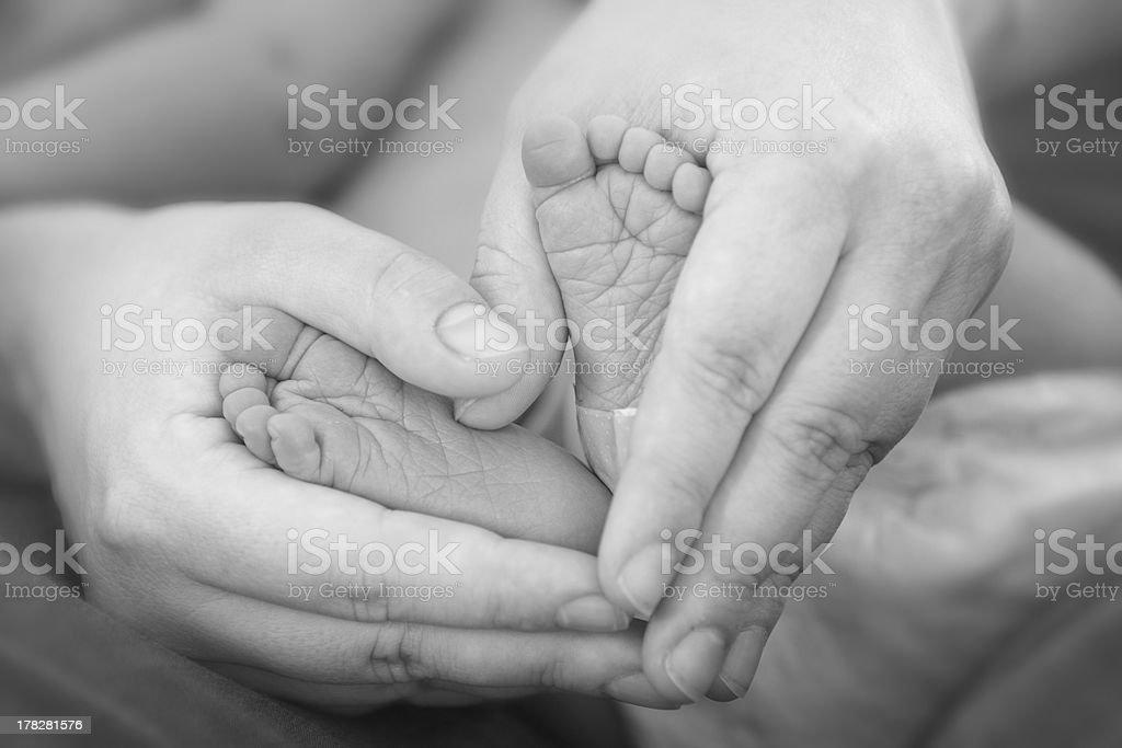 Holding Baby Feet stock photo