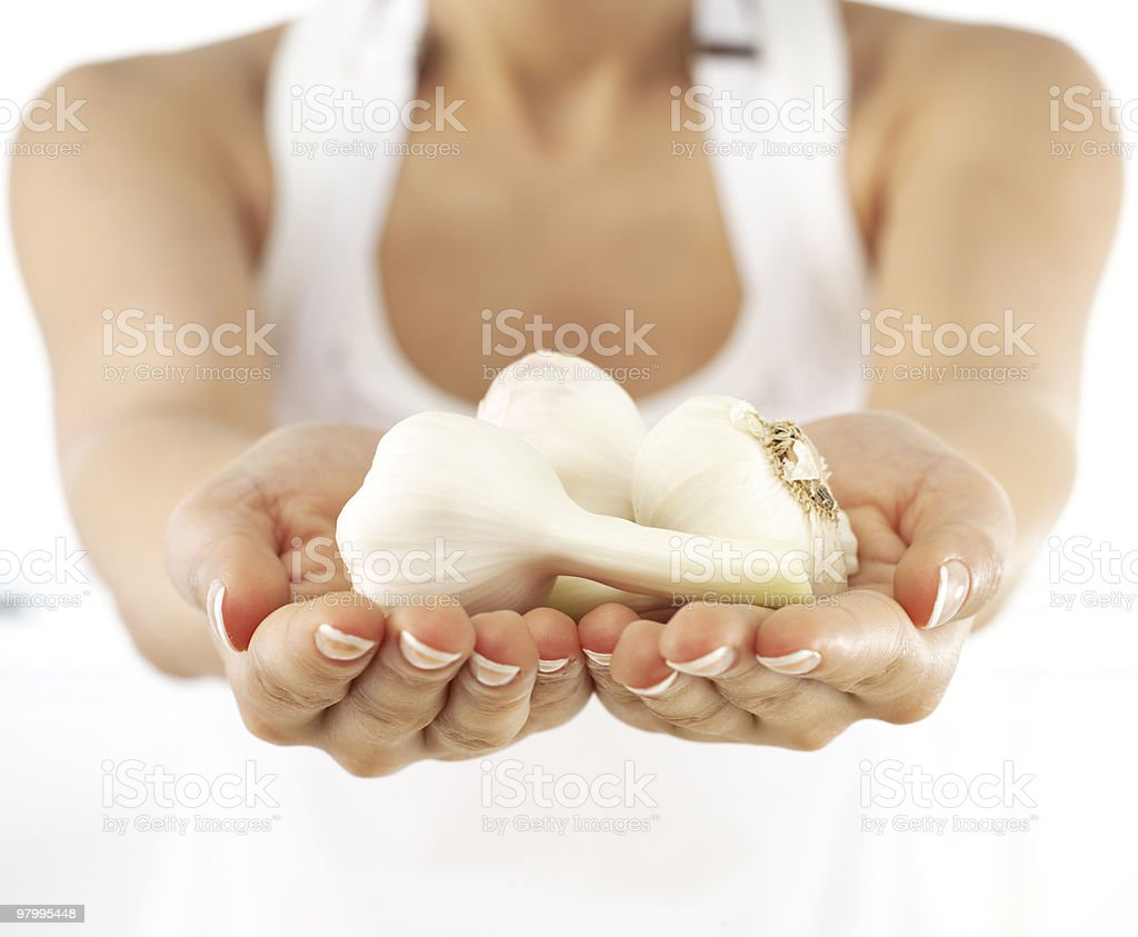 Holding fresh garlic royalty-free stock photo