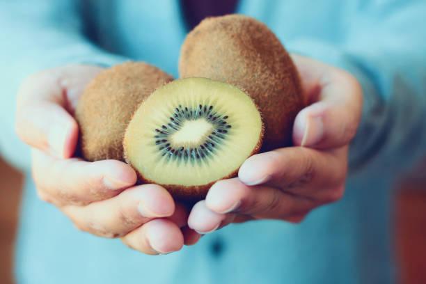 holding fresh kiwi fruit - kiwi imagens e fotografias de stock