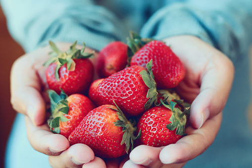 istock holding fresh strawberry 825490296