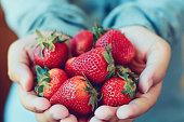 新鮮なイチゴを保持