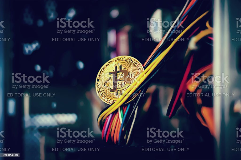holding golden Bitcoin stock photo