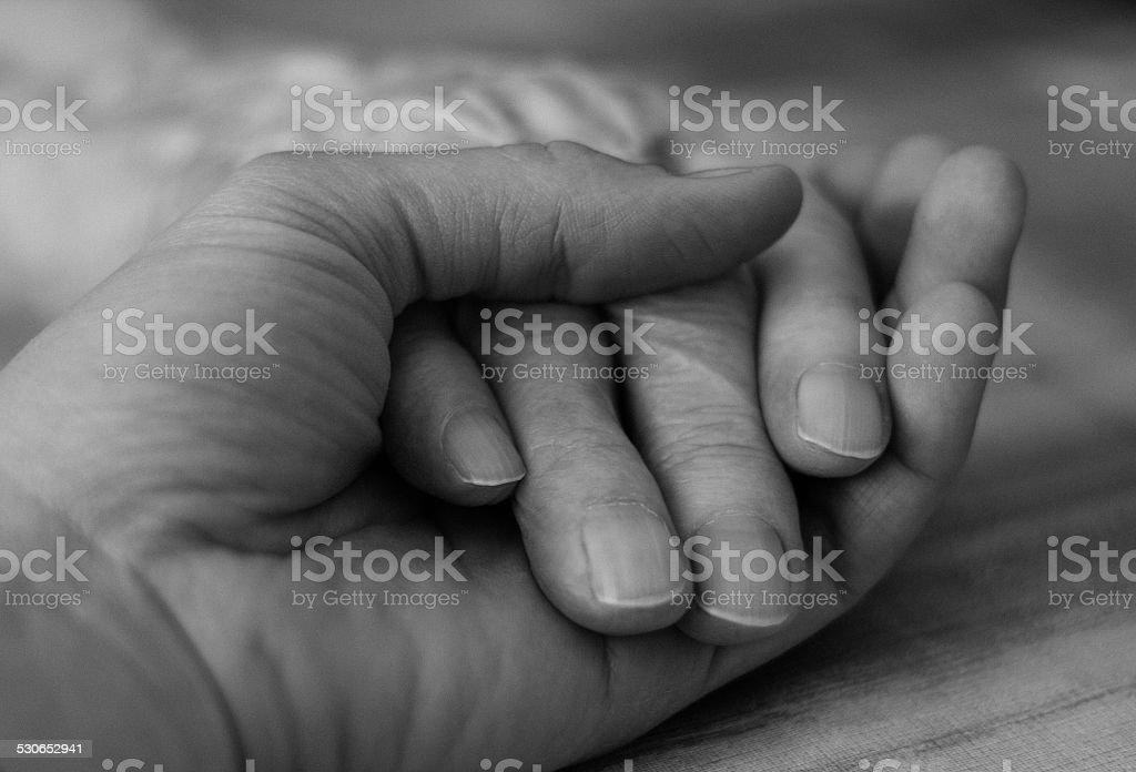 Holding grandmother's hand stock photo