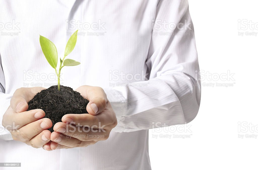 holding green plant in hand royalty-free stock photo