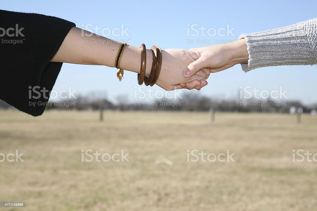 Holding Hands in a Field royalty-free stock photo