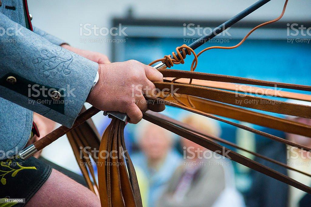 holding many rein for horses Zügel in der Hand halten stock photo