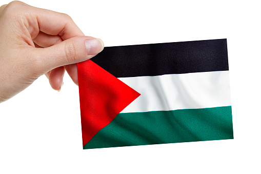 A woman is holding the Palestinian Flag on white background