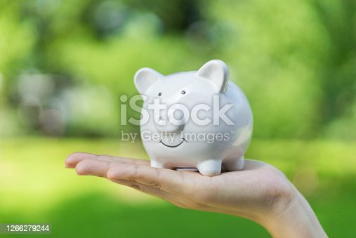 Holding Piggy Bank on Natural Background