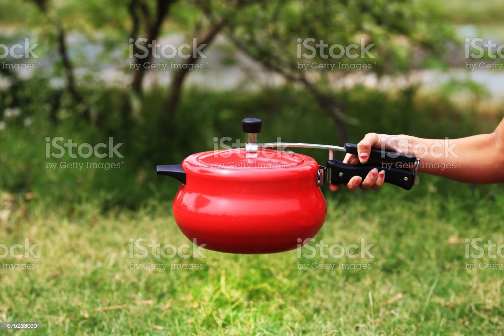 Holding Pressure Cooker royalty-free stock photo