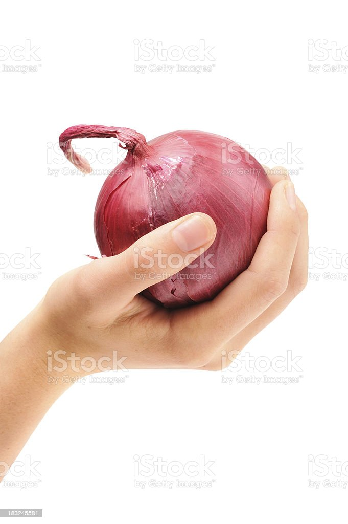 Holding Red Onion in Hand royalty-free stock photo