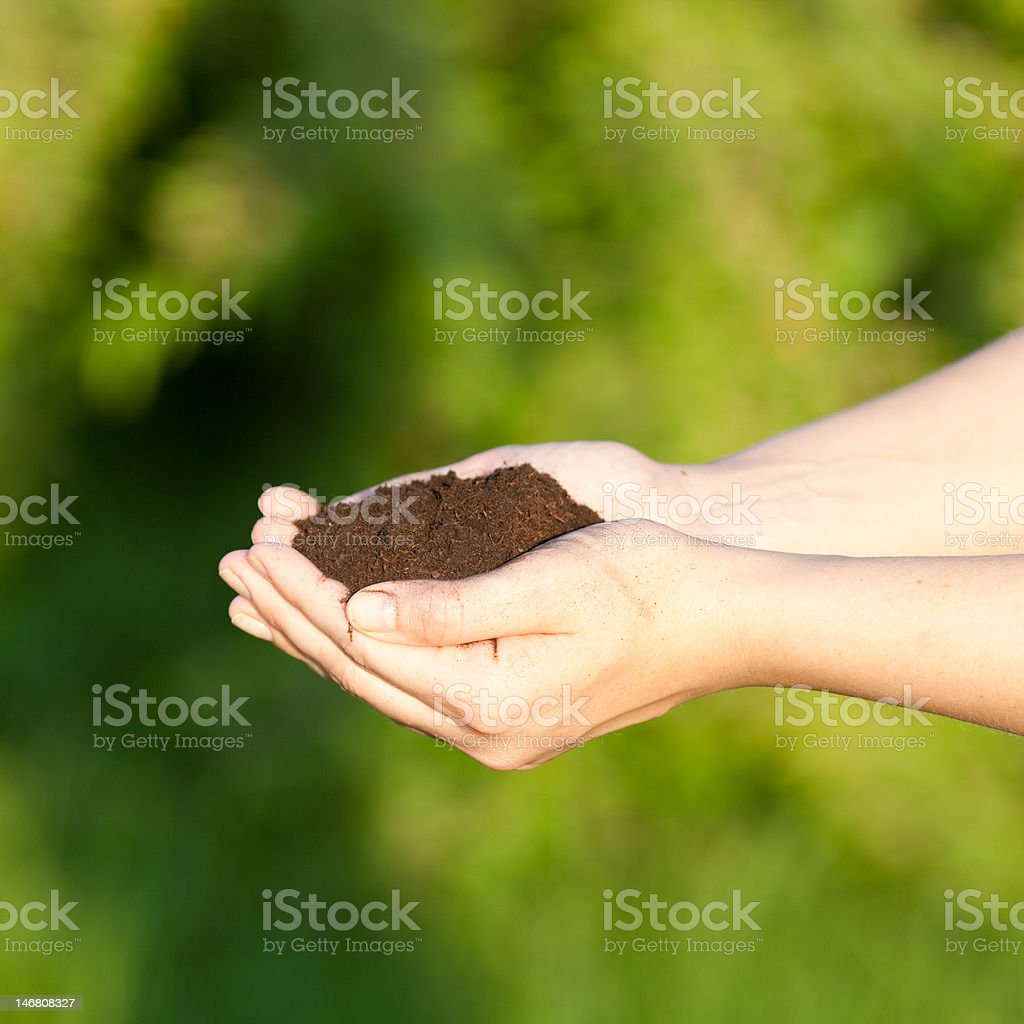 Holding soil royalty-free stock photo