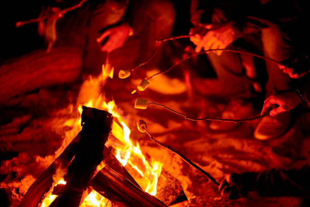 Holding sticks with marshmallows above campfire Close-up of unrecognizable tourists enjoying camping and roasting marshmallows on campfire at night bonfire stock pictures, royalty-free photos & images