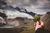 istock Holding three coca leaves to Pacha Mama, Ausangate Peru 1079766280