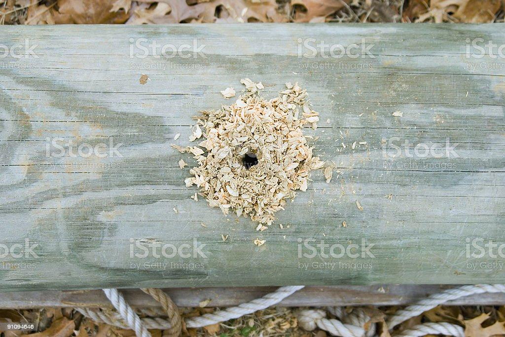 Hole-in-Pole Lizenzfreies stock-foto
