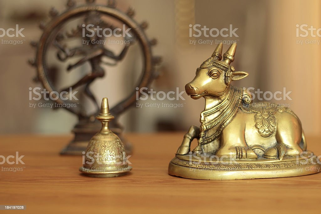 holey cow and divine shiva stock photo