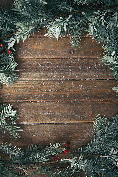 holiday background with fir branches - ast pflanzenbestandteil stock-fotos und bilder