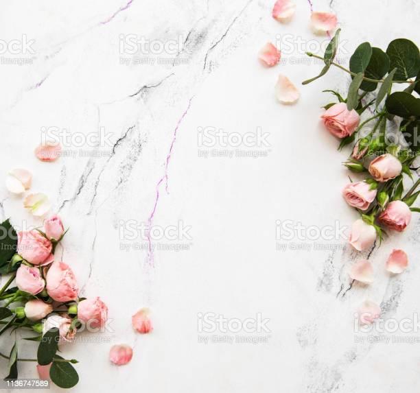 Holiday background with pink roses picture id1136747589?b=1&k=6&m=1136747589&s=612x612&h=kq1i34 hwrrpspnkkz5e23j4lwryz4axjpzllyxycq0=