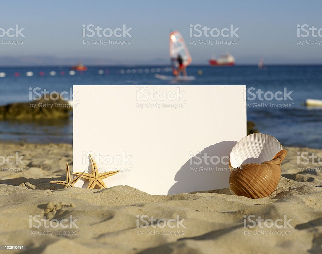 Holiday beach concept shells, sea stars and blank white board royalty-free stock photo