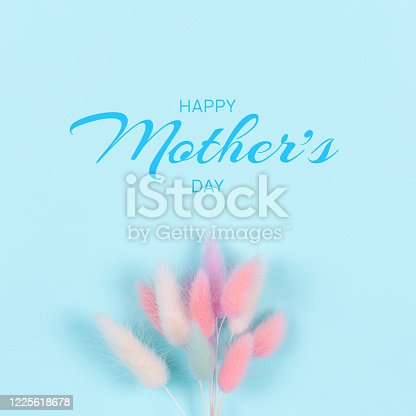 Happy Mothers day greeting card. Cute bouqet of colorful spikelets on blue background. Flat lay.