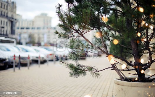istock Holiday cityview background with fir tree and light bulbs 1288838611