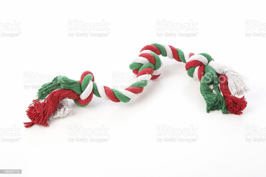 Holiday colored dog toy royalty-free stock photo