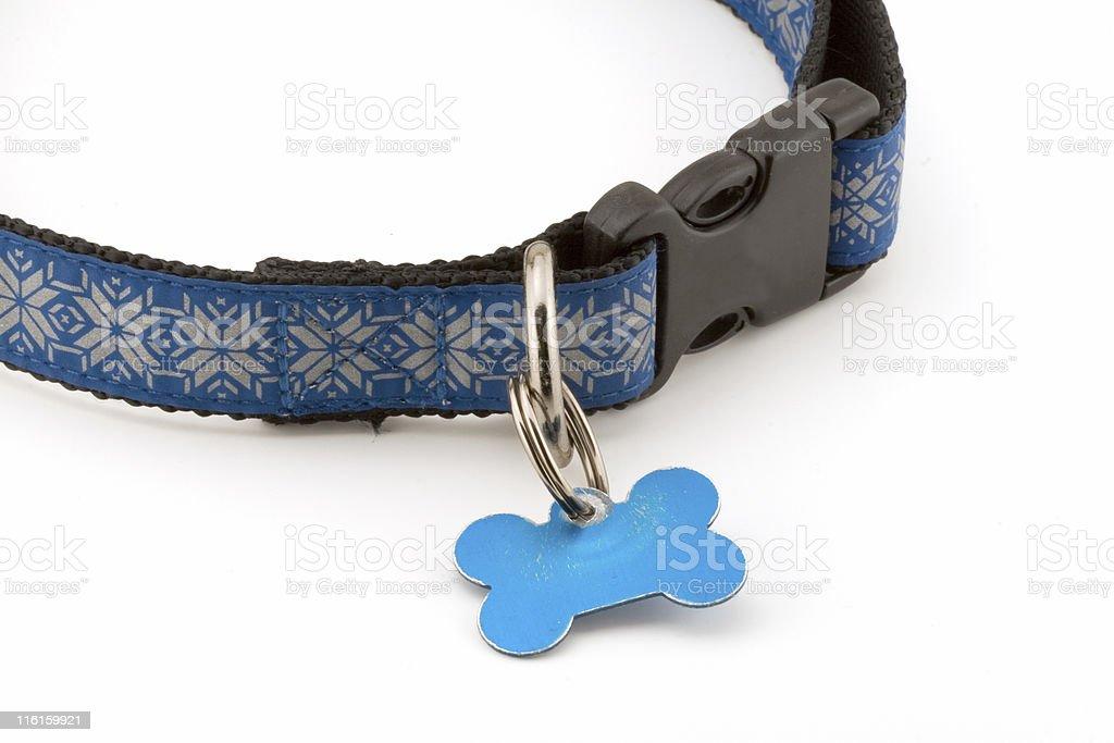 Holiday Dog collar stock photo