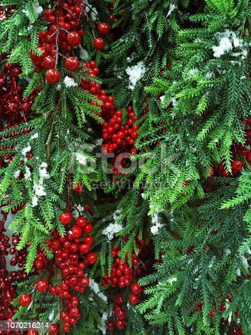 istock Holiday Evergreen Branches and Berries. 1070216214