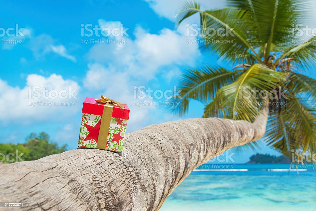 Holiday Gift Box On Coconut Palm Tree At Tropical Beach Royalty Free Stock Photo