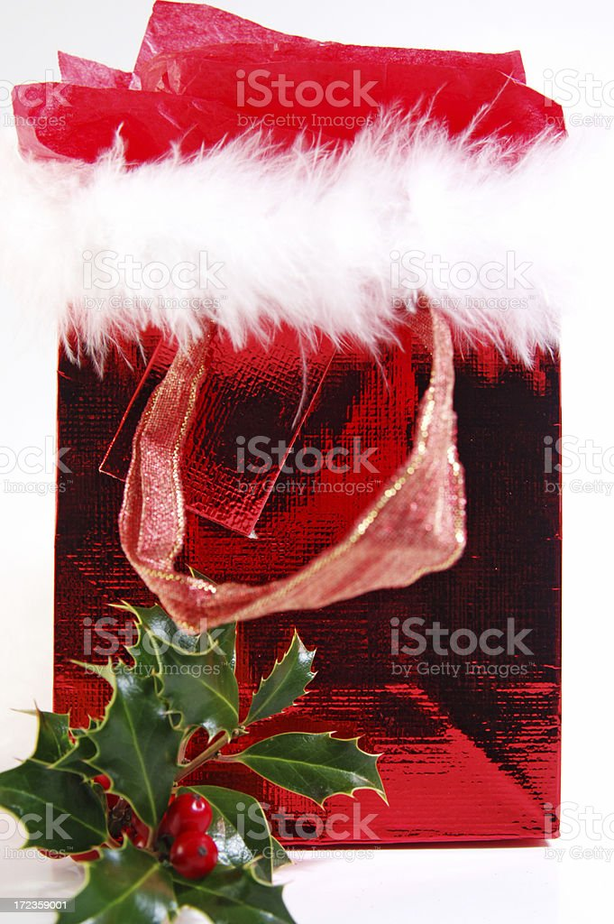 Holiday gift royalty-free stock photo