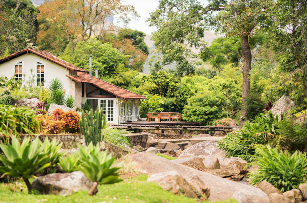 Holiday home in middle of nature stock photo