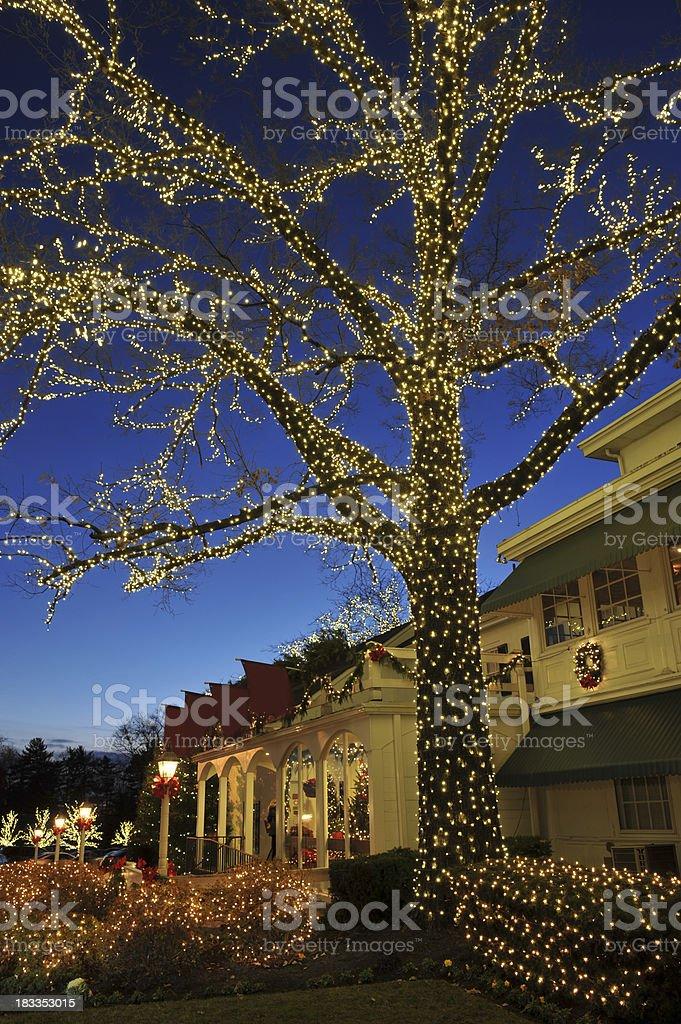 Holiday Light Decoration royalty-free stock photo